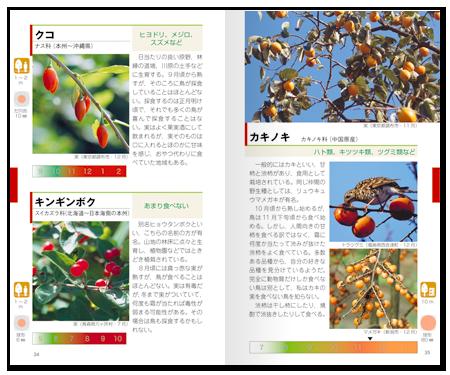野鳥と木の実ハンドブック中身